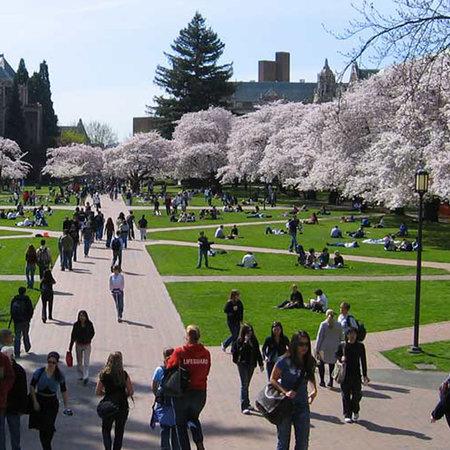 Quad at the Univ. of Washington